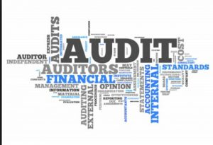Auditing in Turkey